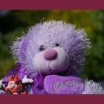 Il cliente che fa danni e gli orsacchiotti glitter color glicine