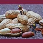 Lavoro e schiavitù: post del primo maggio